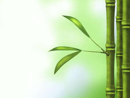 simbol: Verde di bamb?