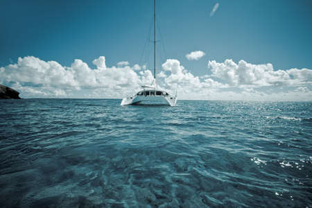 catamaran: sailboat on the water