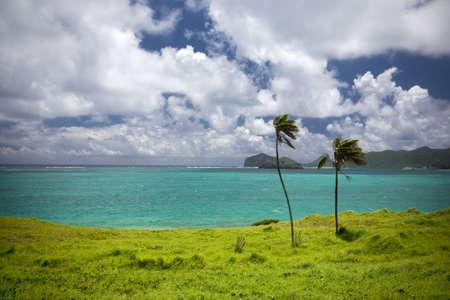 horizon from Lord Howe Island Australia photo
