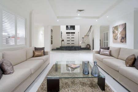 interni casa: Lussuoso salotto con grande ingresso in background