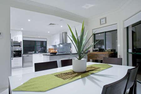residential market: Modern kitchen in luxury mansion
