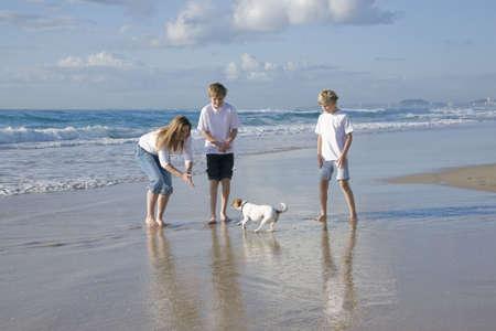 perros jugando: Familia jugando con perro en la playa