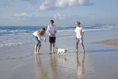 Family playing with dog on the beach photo