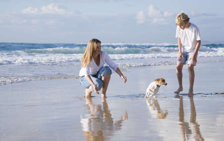 beach animals: Family playing with dog on the beach