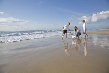 familia jugando: Familia jugando con perro en la playa