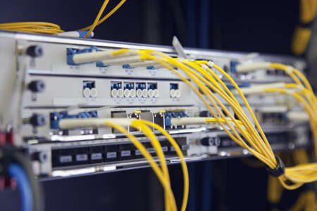 Network Switch with connected yellow cables photo