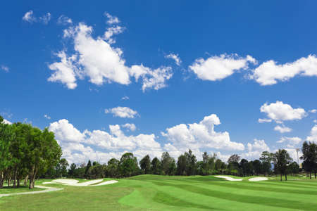 Sunny golf green with scattered clouds on a blue sky and forest Stock Photo - 11800569