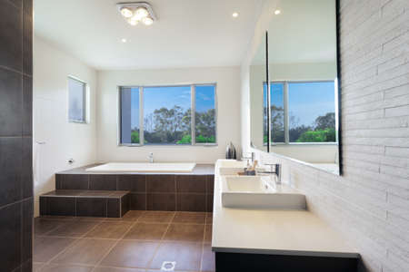 bathroom interior: Modern twin bathroom with stylish bath