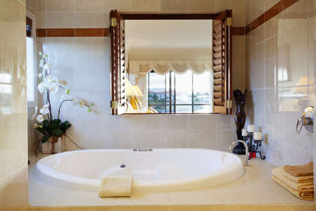 Luxurious bathroom in stylish house Stock Photo - 13909635