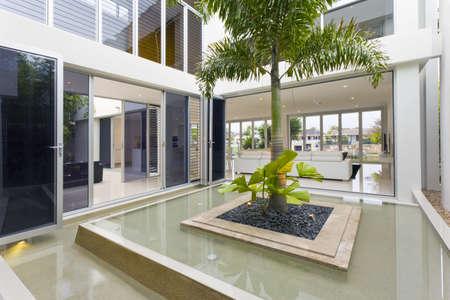 Palm boom en een fontein in luxe huis