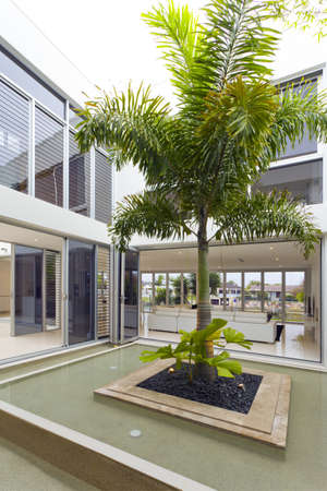 entertaining area: Palm tree and fountain inside luxury home