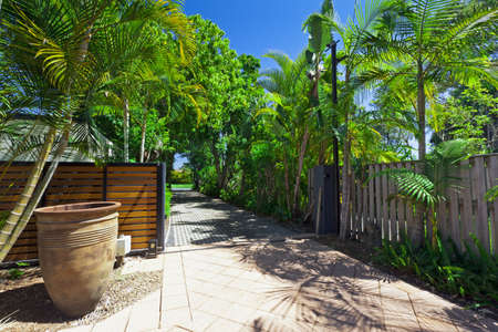 Lush green driveway and gate Stock Photo - 15616727