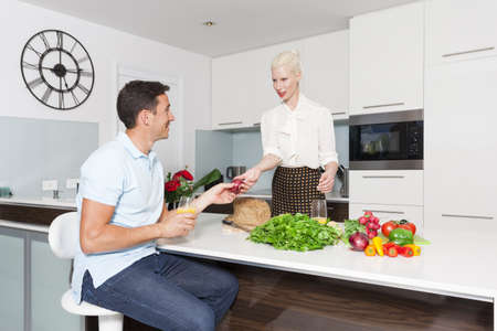 Attractive young couple in modern kitchen Stock Photo - 18936989