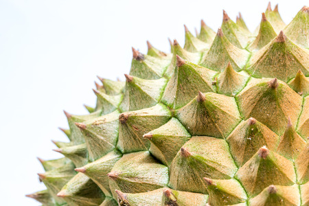 The close up to Thorns of durian Stock Photo