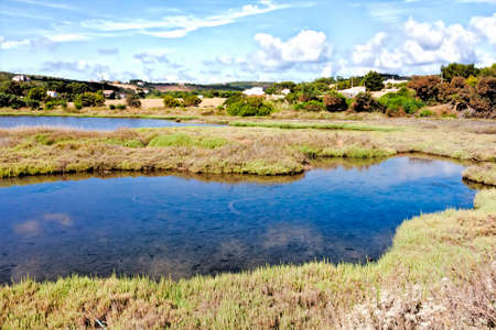 marshes: Salt marshes of Carloforte, San Pieter s island - Italy