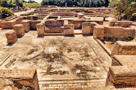 Cisiarii Roman empire thermal bath - frigidarium - landscape in Ostia Antica - Rome - Italy