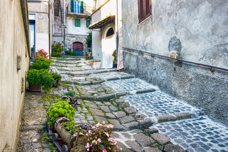 Suggestive route of the Italian village of Tolfa in the Lazio Region with flower beds that surround the ancient road paved with Roman cobblestones, Rome Italy