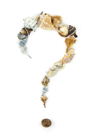 indecision: Question Mark made of Several Shells on white background; could represent the concept of indecision on the next vacation destination. Stock Photo