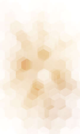 Fantasy white and brown colors geometric polygon background. Vettoriali