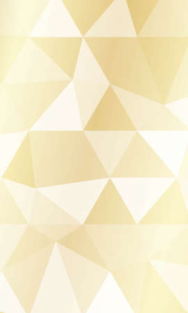 Vector Polygon Geometric Background. For business, presentation, banner, wallpaper. Vectores