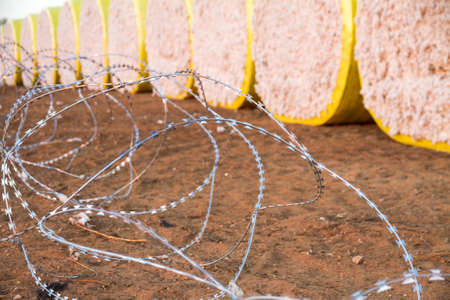 protectionism: Round bales of harvested cotton wrapped in yellow plastic ready for shipment, Surrounded by a barbwire