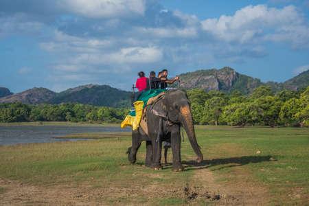 Kandalama SRI LANKA - 4 juli 2015: De olifant, paardrijden