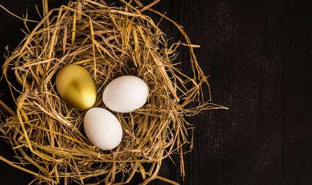 Golden egg in the nest concept background
