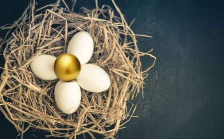 golden egg: Golden egg in the nest concept background