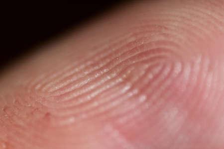 friction ridges: A finger tip