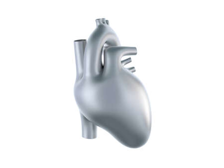 heart anatomy: Human metal heart isolated on white Stock Photo