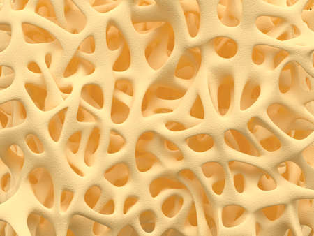 Bone spongy structure close-up, healthy texture of bone