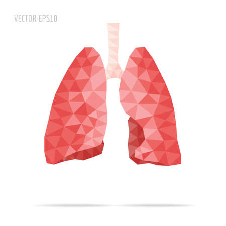 faceted: Lungs faceted