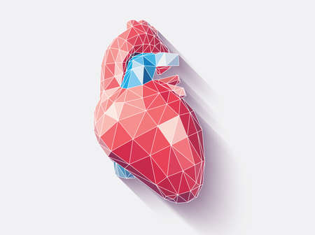 Vector illustration of human heart with faceted low-poly geometry effect, vector