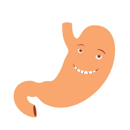 Illustration of happy smiling human stomach cartoon character
