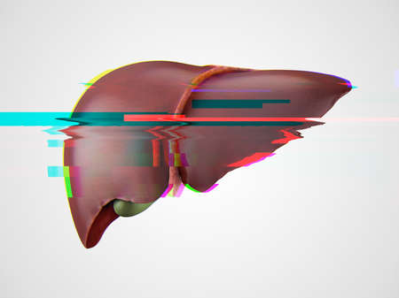 Realistic 3d illustration of anatomical model of healthy human liver with glitch effect, failure concept