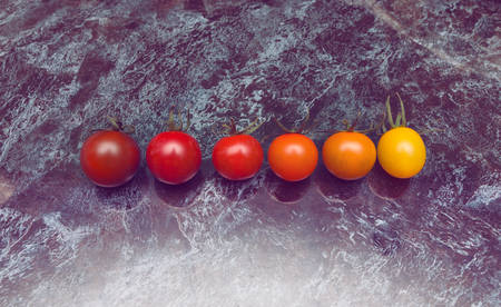 Perfect color gradation line of diverse kinds of tomatoes on the table Stock Photo