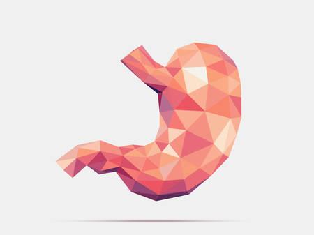 Illustrazione dello stomaco umano con effetto geometria sfaccettata a basso numero di poligoni Archivio Fotografico - 88470970