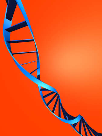 nucleic: dna model