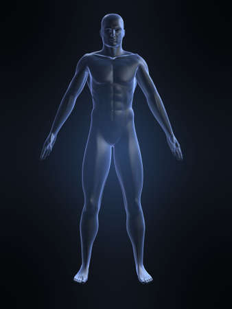 boy  naked: male shape