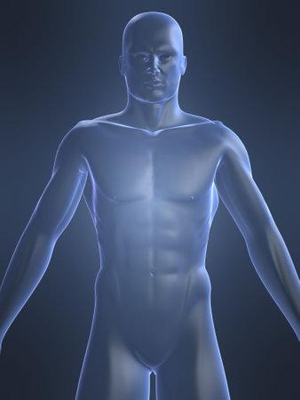man ass: human shape