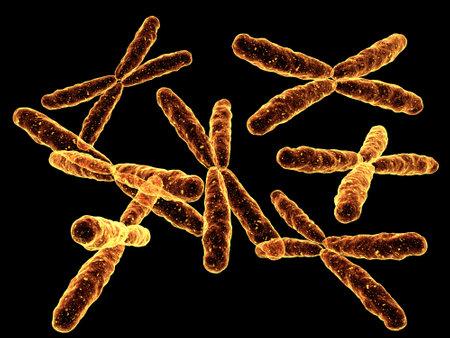 clones: x-chromosome