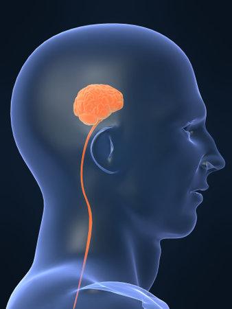 subconscious: small brain