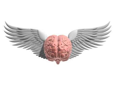 understand: flying brain