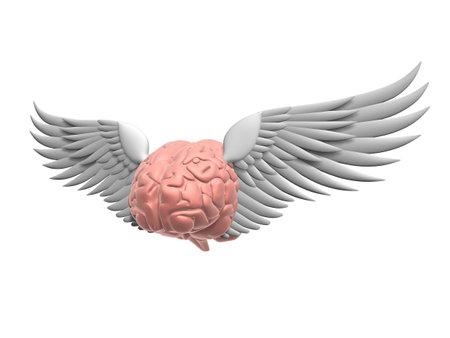 brainy: flying brain