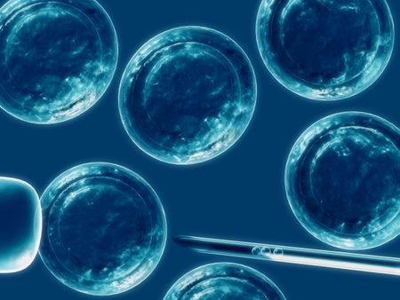 줄기: 세포