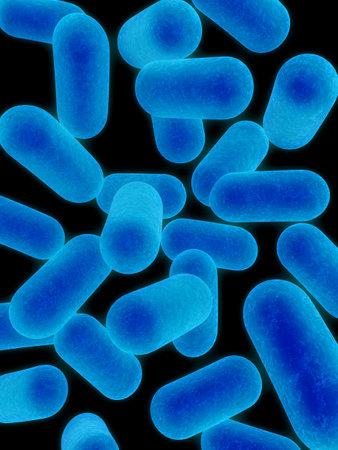 bacteria Stock Photo - 755991