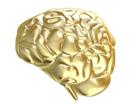 cerebra: golden brain