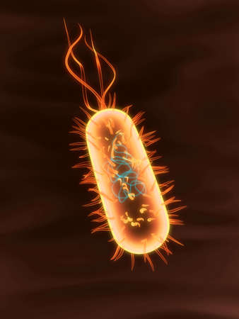 bacterium Stock Photo - 802248