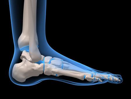 pie humano Foto de archivo