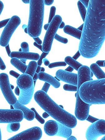 many bacteria Stock Photo - 1066544